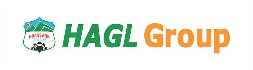 HAGL Group